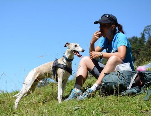 De favoriete tocht van… hond Cedric en gids Gabi
