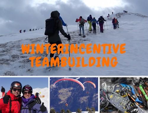 Teambuilding: Sneeuwschoenwandelen