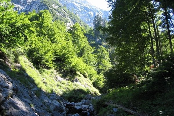 Kaiserkrone – rond de Wilder Kaiser